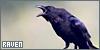 Birds: Ravens: